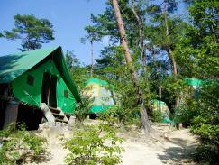 国立吉備少年自然の家
