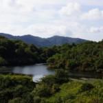倉敷美しい森山の上池
