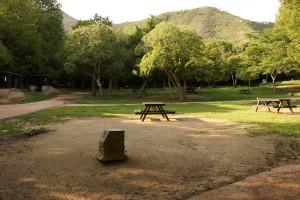市ノ池公園 テントサイト