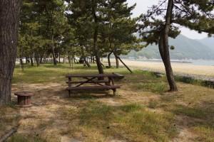 松原キャンプ場 テントサイト