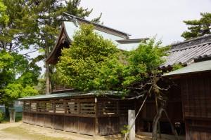 松原キャンプ場 弓削神社 (2)